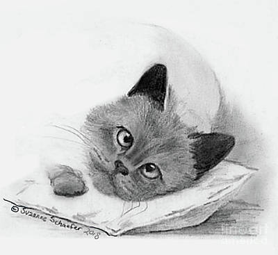 Drawing - Graphite Pencil Drawing - Siamese Cat by Suzanne Schaefer