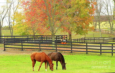Grazing Time Art Print