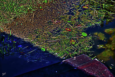 Photograph - Grass Clippings On Lake Water by Gina O'Brien