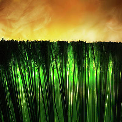 Photograph - Grass Fire by Stephen Dorsett