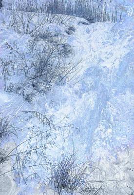 Digital Art - Grass In Snow by Randy Steele