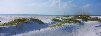 Grass On The Beach, Lido Beach, Lido Art Print by Panoramic Images