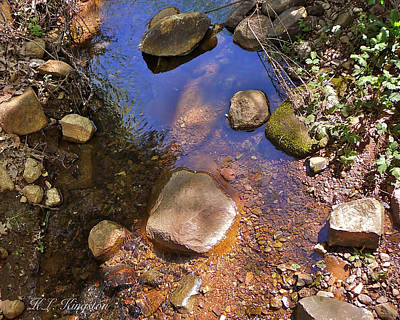 Art Print featuring the photograph Grass Valley Creek Ca by K L Kingston