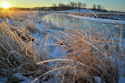 Photograph - Grasses Covered With Hoarfrost Along Nippersink Creek by Ray Mathis
