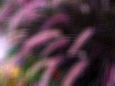 Grasses Art Print by Eileen Shahbazian