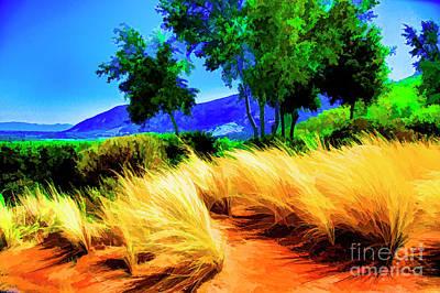 Photograph - Grasses by Rick Bragan