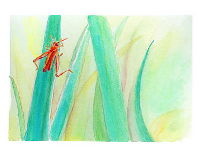 Painting - Grasshopper 2 by C Sitton