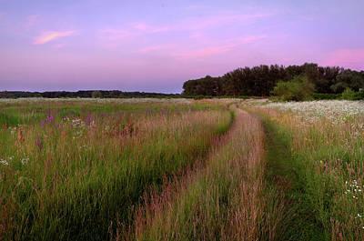 Photograph - Grassland. Lebedivka, 2018. by Andriy Maykovskyi