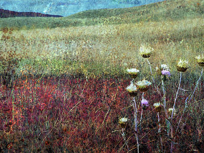 Photograph - Grasslands - Autumn by Ed Hall