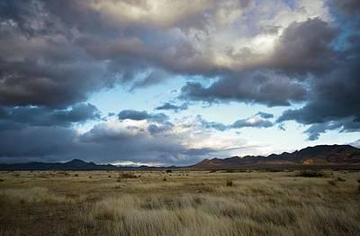 Portal Photograph - Grasslands Near Portal by Bob Gibbons