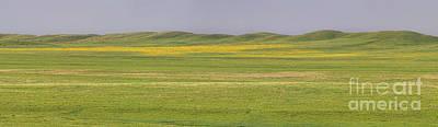 Photograph - Grasslands Panorama by Jim Garrison