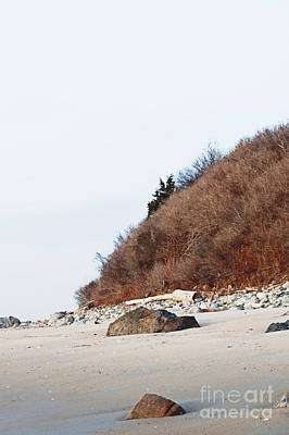 Photograph - Grassy Dune by Ruth H Curtis