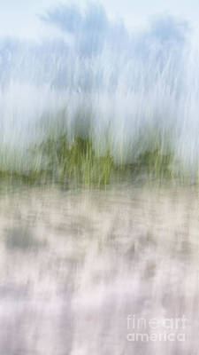 Photograph - Grassy Dunes Narrow by Alissa Beth Photography