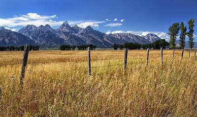 Photograph - Grassy Field In Grand Tetons by Carolyn Derstine