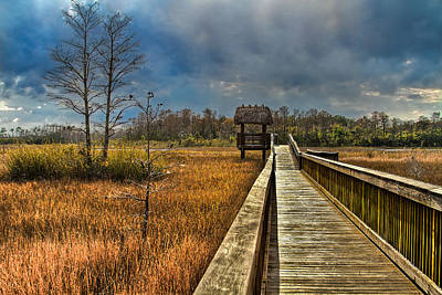 Florida Bridge Photograph - Grassy Glades by Debra and Dave Vanderlaan