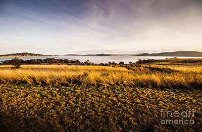 Photograph - Grassy Plains Of Opossum Bay by Jorgo Photography - Wall Art Gallery