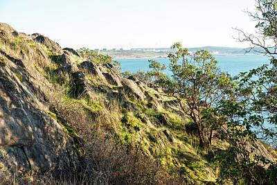 Photograph - Grassy Rock On Cap Sante by Tom Cochran