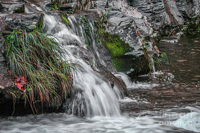 Photograph - Grassy Waterfall by Tom Claud