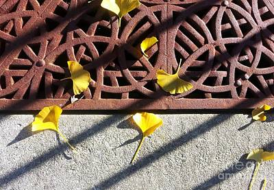Photograph - Grate And Ginko Leaves by Ethna Gillespie