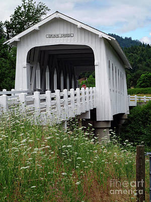 Historical Bridges Digital Art - Grave Creek Bridge by Methune Hively