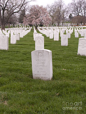 Grave Markers In Arlington National Cemetery Art Print by Tim Grams