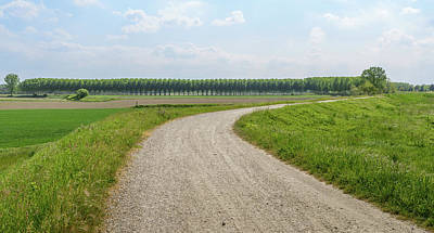 Photograph - Gravel Path Curve by Alexandre Rotenberg