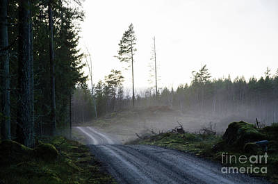 Photograph - Gravel Road By A Misty Evening by Kennerth and Birgitta Kullman