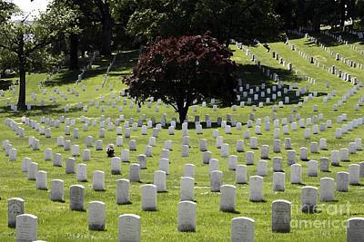 National Cemetery Digital Art - Graves At Arlington National Cemetery With Watercolor Effect by William Kuta