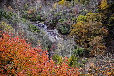 Photograph - Graveyard Fields Lower Falls by Allen Nice-Webb