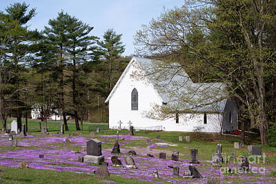 Graveyard Phlox Country Church Art Print by John Stephens