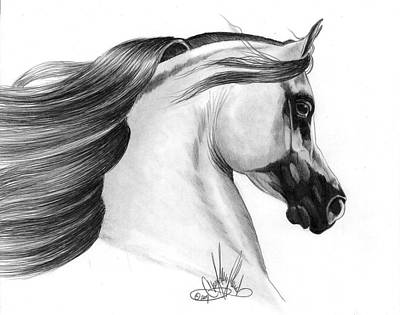 Gray Arabian Art Print by Cheryl Poland