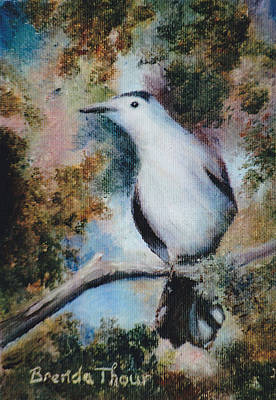 Painting - Gray Catbird by Brenda Thour
