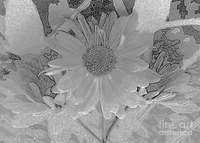 Photograph - Gray Daisies Fantasy by Barbie Corbett-Newmin