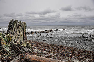 Photograph - Gray Day by Roxy Hurtubise