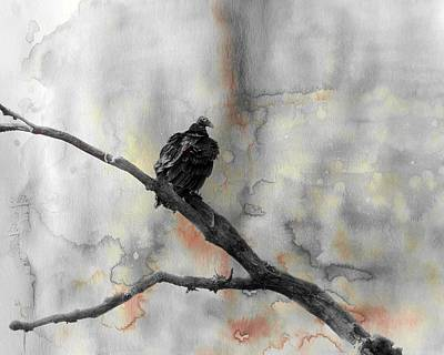 Vulture Mixed Media - Gray Day Vulture by Gothicrow Images