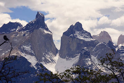 Gray Glacier Chile Art Print by Charles  Ridgway