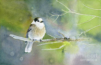 Painting - Gray Jay by Michelle T Williams