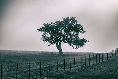 Art Print featuring the photograph Gray Sky Morning by Mike Trueblood