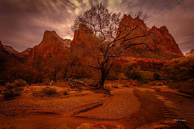 Photograph - Gray Sky Over Zion by Tim Bryan