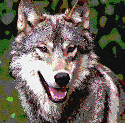 Gray Wolf Art Print by Charles Shoup