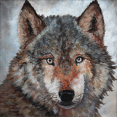 Painting - Gray Wolf by Timithy L Gordon