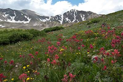 Torreys Peak Photograph - Gray's And Torreys by Cascade Colors