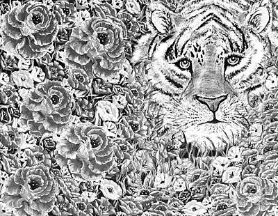Animals Royalty-Free and Rights-Managed Images - Grayscale cuddles the tiger  by Angela Whitehouse