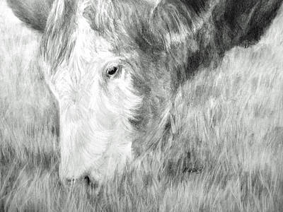 Art Print featuring the drawing Graze by Meagan  Visser
