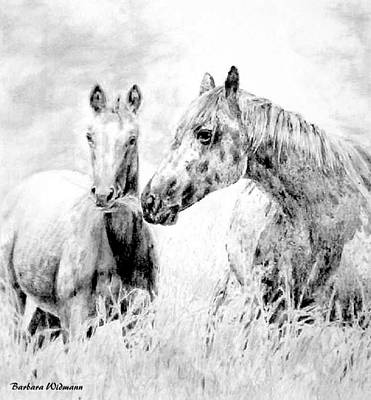 Grazing Art Print by Barbara Widmann