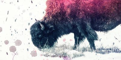 Grazing Bison Art Print