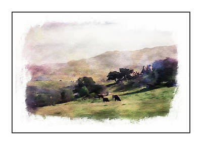 Photograph - Grazing Cattle by Hugh Smith