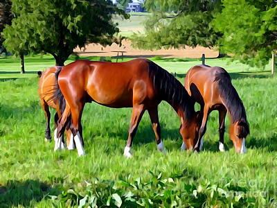 Photograph - Grazing Horses by Ed Weidman