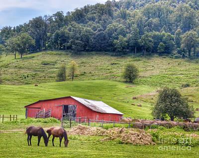 Barn Photograph - Grazing  by Kerri Farley