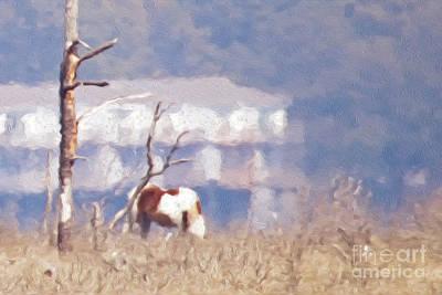 Photograph - Grazing Wild Pony by Dawn Gari